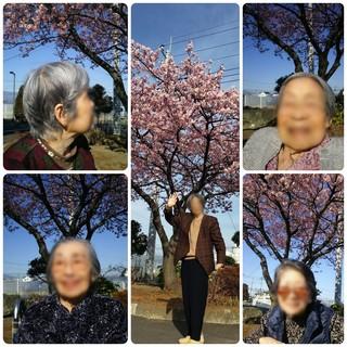 CollageMaker_20210301_151250549_copy_1024x1024.jpg